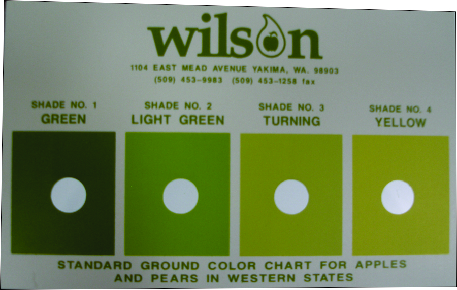 Wilson color guide